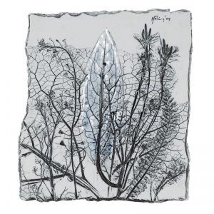 Ierbar VII-arta-decorativa-daniela-fainis