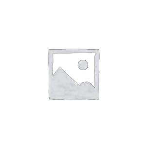 Statornicie și înțelepciune-pictura-bogdana-contras